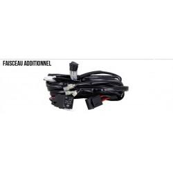 Faisceau double branchement